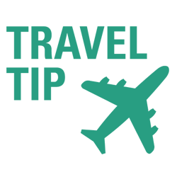 Travel Tip Icon with Plane